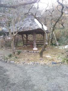 京王百草園 あじさい散策