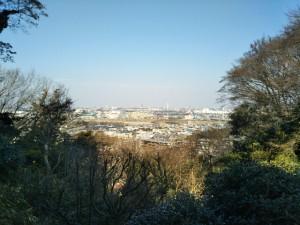 京王百草園からの景色