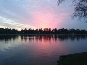 水元公園の夜景というか夕暮れの景色